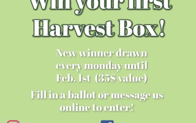 Harvest Box Giveaway