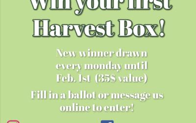 Harvest Box Giveaway